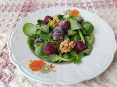 Dondurulmuş Meyveli Semizotu Salatası