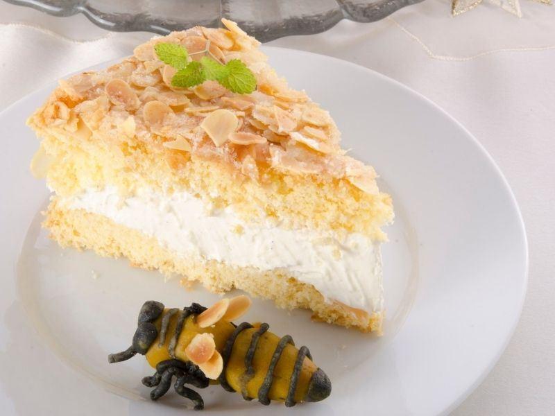 Bienenstich (Arı Sokması Pastası)