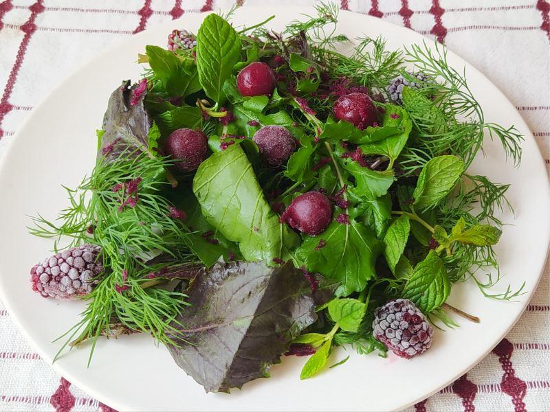 Dondurulmuş Meyveli Yeşil salata