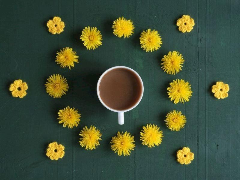 Hindiba Kahvesi