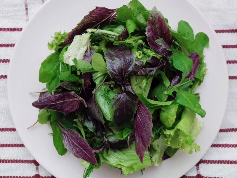 Reyhan Salatası
