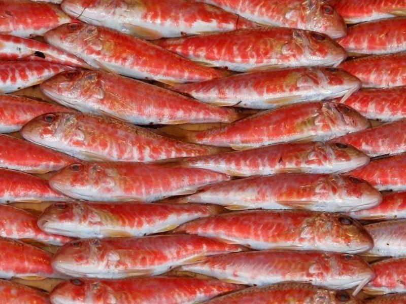 Barbun Balığı Nasıl Temizlenir ve Nasıl Pişirilir?