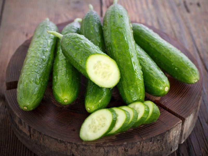 Evde Salatalık Nasıl Yetiştirilir?