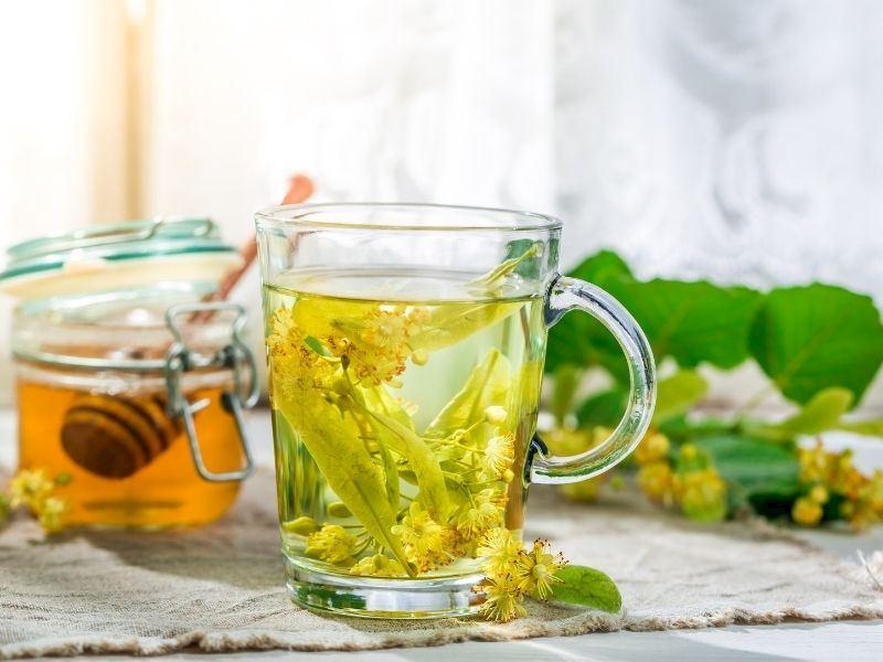 Ihlamur Çayının Faydaları Nelerdir, Nasıl Yapılır?