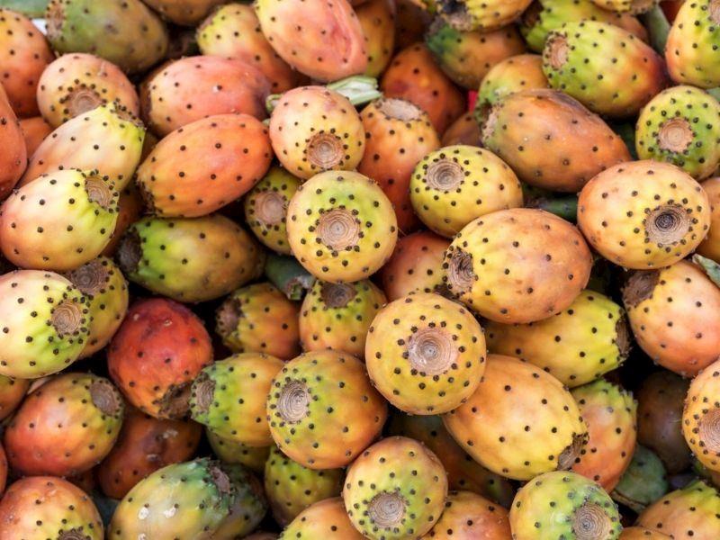 Kaktüs Meyvesi Nasıl Yenir ve Nasıl Soyulur?