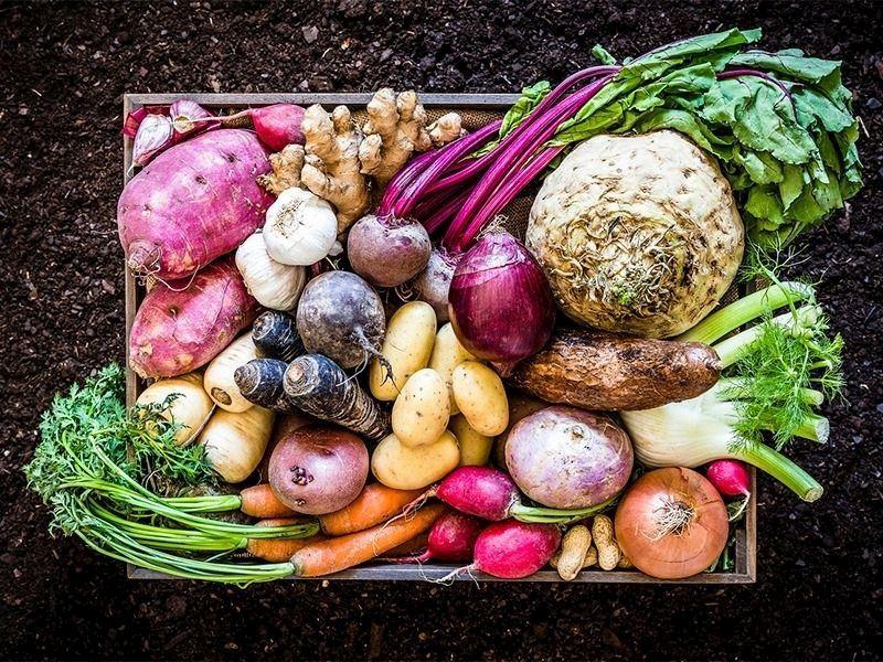 Kök Sebze Yemekleri: Kök Sebzelerle Yapabileceğiniz 12 Nefis Tarif