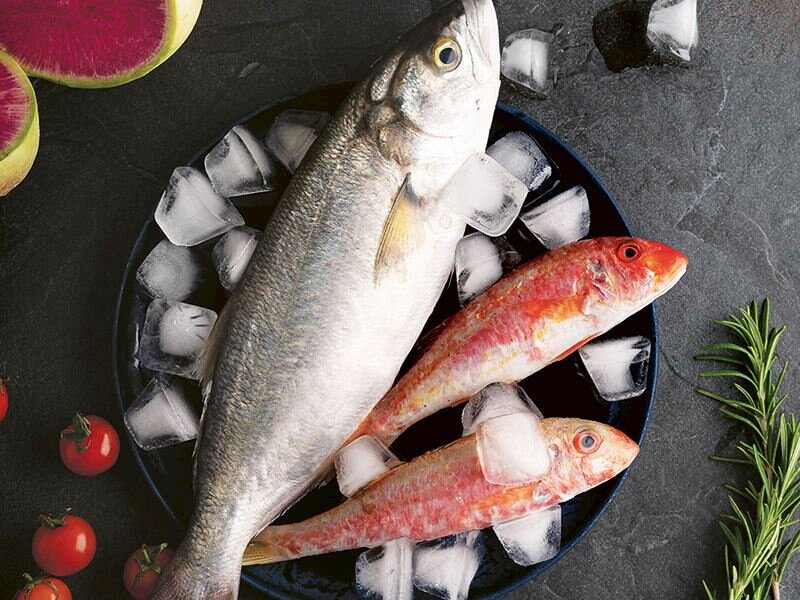 Ortaya karışık balık ziyafeti