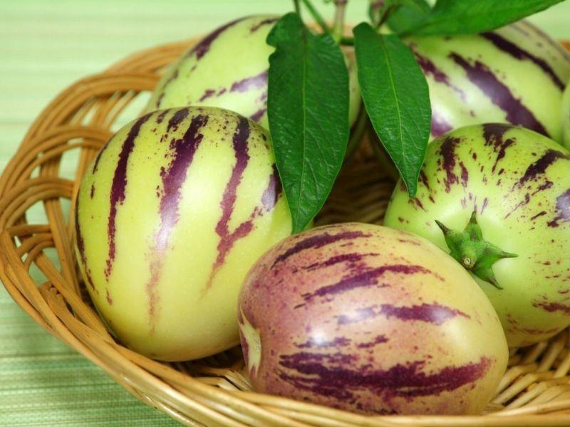 Pepino Nasıl Yenir, Pepino Meyvesinin Faydaları Nelerdir?