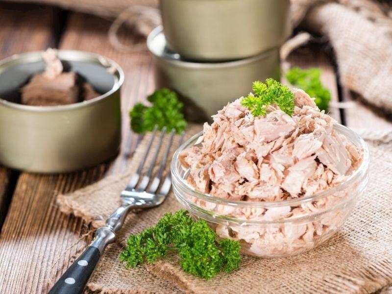 Ton Balığı Nasıl Yenir, Hangi Tariflerde Kullanılır?